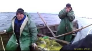В Запорожье остановили незаконный вылов рыбы щуки и толстолобов(Этот ролик обработан в Видеоредакторе YouTube (http://www.youtube.com/editor), 2016-12-14T08:14:45.000Z)