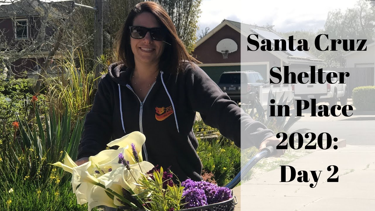 Santa Cruz Shelter in Place 2020: Day 2