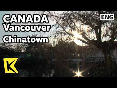 【k】canada-travel-vancouver[캐나다-여행-밴쿠버]-차이나타운,-중산-공원/chinatown/garden/zhongshan-park/bamboo