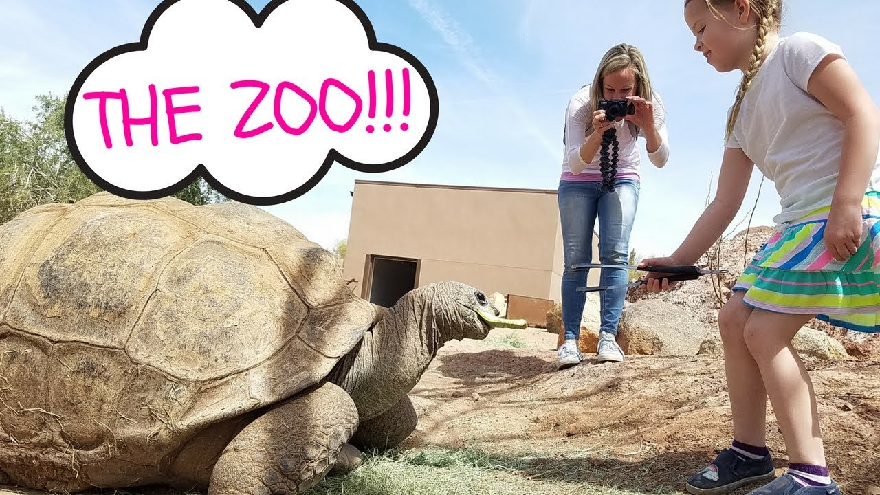Download A Family Visit to the Phoenix Zoo !!!