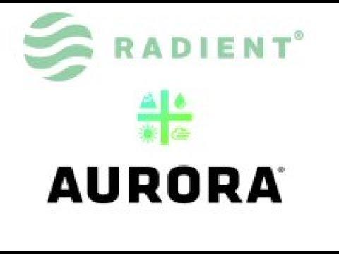 Things are Looking Grim for Canadian Marijuana Stocks - Aurora RTI Research Venture