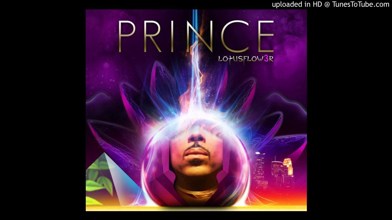 Prince ck 2 the lotus youtube prince ck 2 the lotus izmirmasajfo Image collections