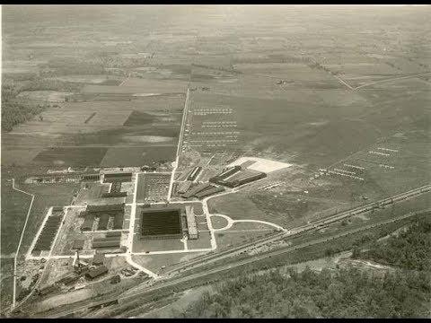 Aliens & UFOs (ALIEN OF THE WEEK):  The 1947-Wright Field Alien Case