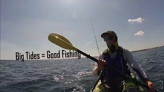 Kayak Fishing- Fishing Big Tides- Lots of Fish