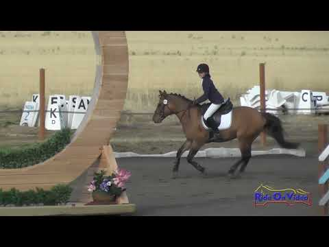 082S Caitlin Elizabeth Miller on Ricky JR/YR Beginner Novice Show Jumping Spokane Fall HT Sept. 2017