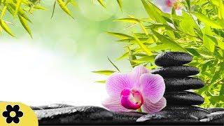 Música para Zen , Música Relaxante, Música para o alívio de estresse, Música Tranquila, ✿3256C