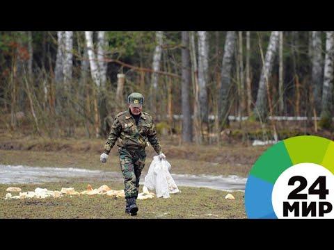 «Особенности национальной охоты»: экстрим на съемках - МИР 24