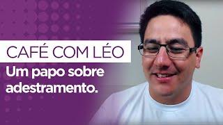 Saiba o que rolou na Expo Tudo de Cão - Café com Leo thumbnail