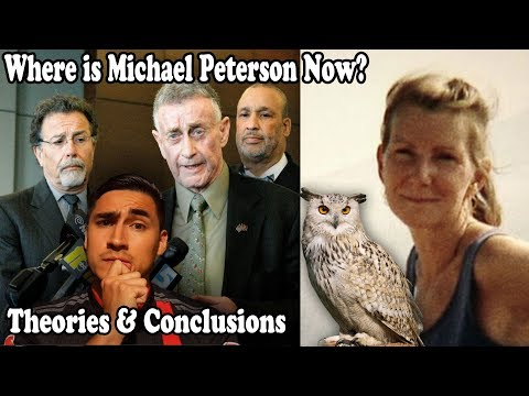 The Staircase Netflix 2018  Owl Theory and Conclusions  Where is Michael Peterson Now