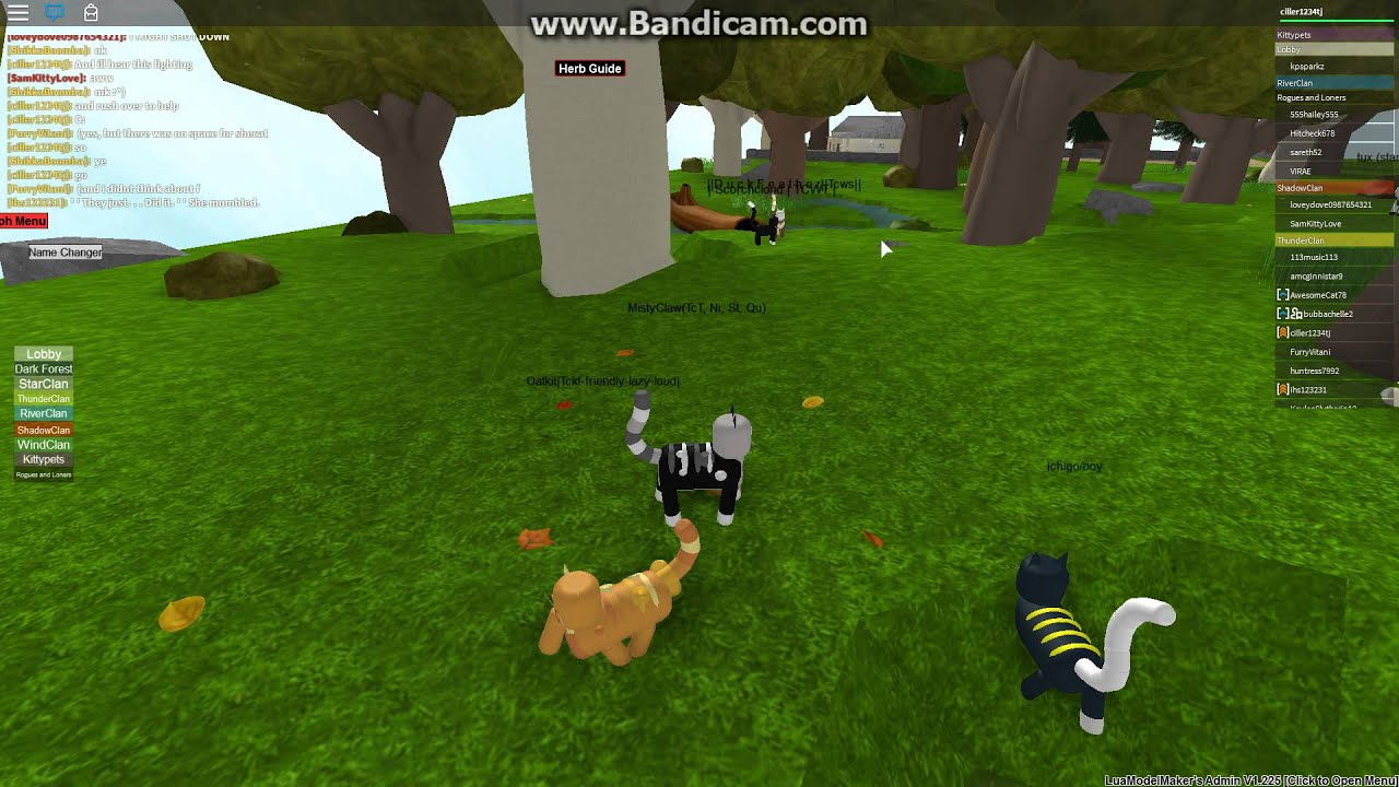 The Best Roblox Warrior Cats Morphs