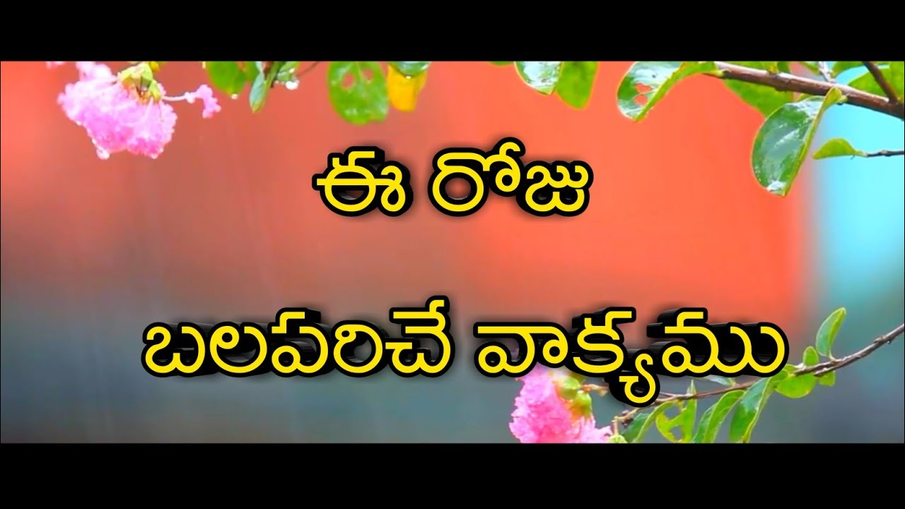 Today promise|today god's promise|latest Telugu Christian WhatsApp status  videos|daily Bible verses