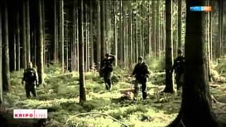 Lichtenberg - Der Fall Peggy Knoblauch: Eine Chronik der Ereignisse