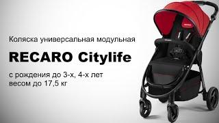 RECARO Citylife универсальная коляска(RECARO Citylife универсальная коляска модульного типа для детей весом до 17,5 кг. На шасси может быть установлены..., 2016-02-16T16:07:31.000Z)