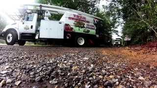 tree removal cost stump grinding