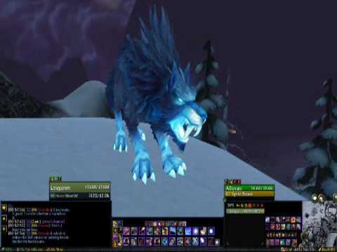 New Feed Pet Animation