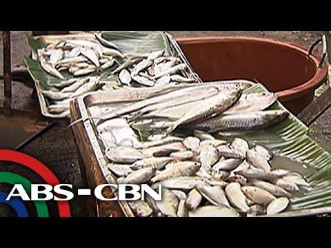 TV Patrol: Presyo ng gulay at isda, tumaas dahil sa bagyo
