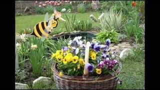 видео Как украсить сад  и огород своими руками: фото