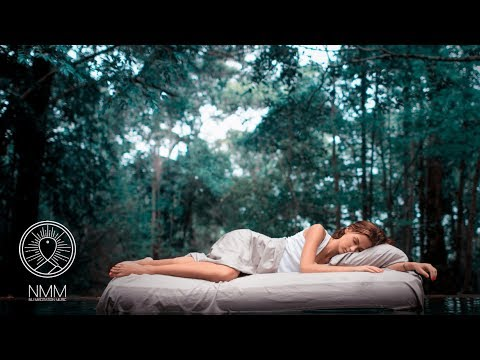 432 Hz Sleep Music: Sleeping In The Forest Music, Relaxing Music, Frequency Sleep Meditation 30708S