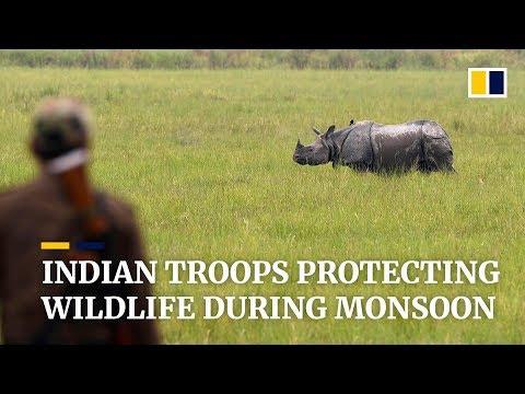 Indian troops protecting wildlife during monsoon season