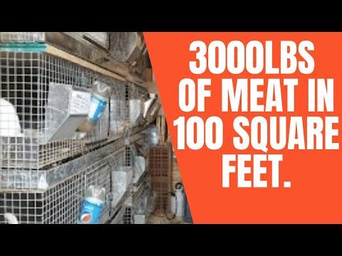 Urban Farming: 3000lbs of Food from 100 Square Feet.