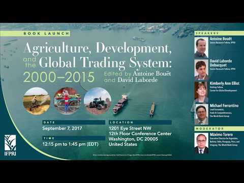 Agriculture, Development, and the Global Trading System - Opening Remarks