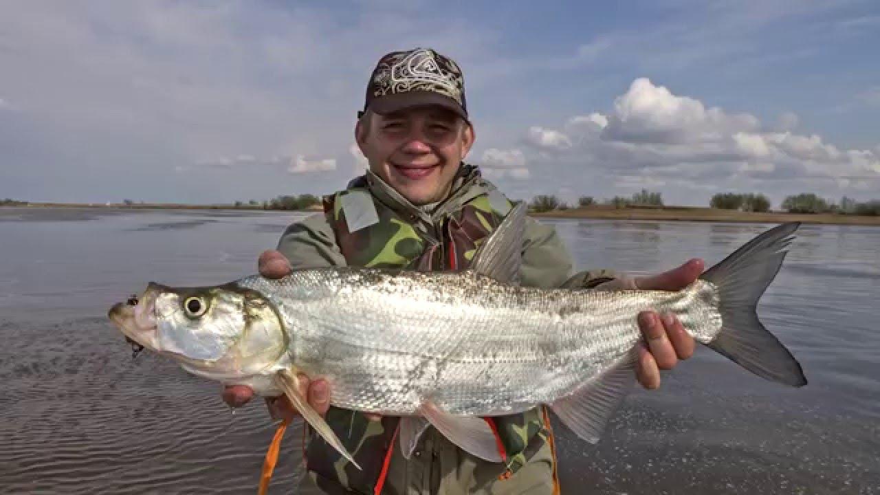 рыболовные компании хабаровского края