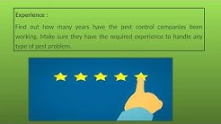 Important Things to Consider When Selecting a Pest Control Company