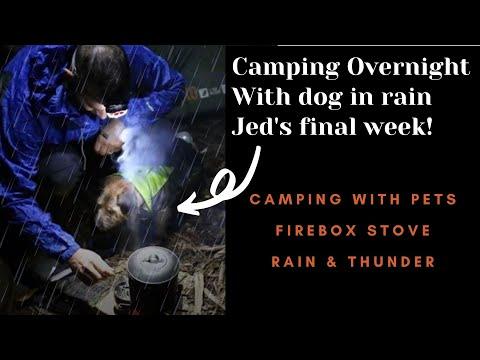 Overnight Wet & Wild Camp With My Dog, Firebox, New Zealand.