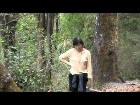 Mountain Village Life In Bhutan With My Husband , Norbu!