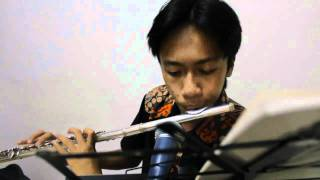 My Way Instrumental (Flute cover).avi
