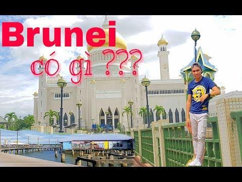 HCĐ#01#BRUNEI#PHẦN 1:BRUNEI CÓ GÌ ???