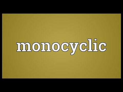 Monocyclic Meaning