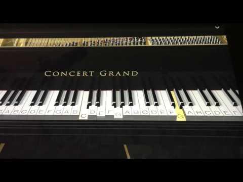 Yennai Maatrum Kaadhale (Naanum Rowdy Thaan) Piano Tutorial