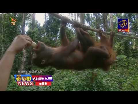 Siyatha TV News 06.00 AM – 17 – 02 – 2018