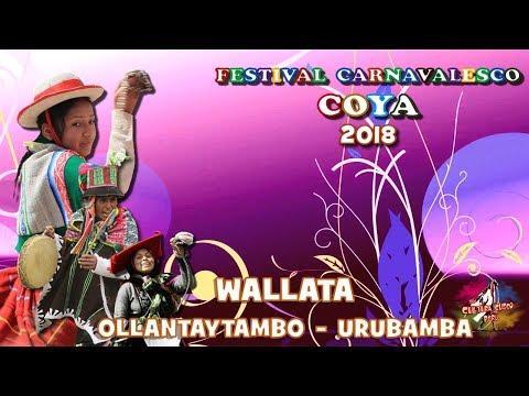 WALLATA de Ollantaytambo COYA 2018