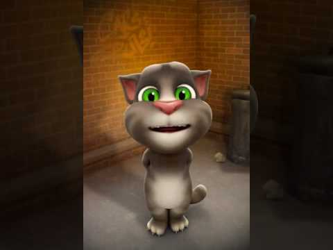 Funny shayari Gali version  sung by Talking tom😂😂😂😂