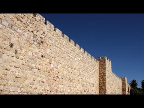 Ochranná zeď / Hedge of protection