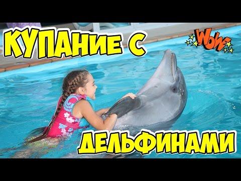 Плавание с дельфинами в дельфинарии НЕМО Одесса в День Рождения. Children Swim with Dolphins.
