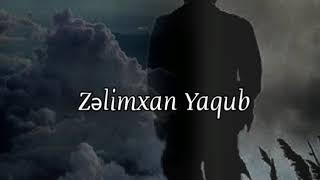 Zəlimxan Yaqub şeirləri - Ata.
