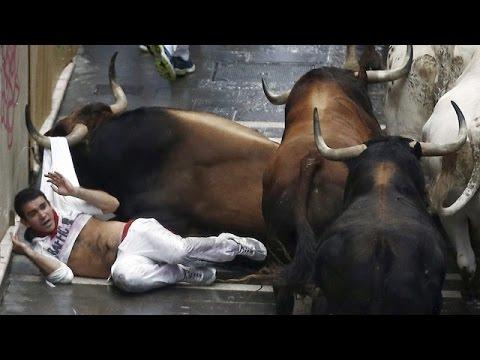 Смотреть видео про быков