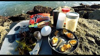Forage and Cook - Find Free Food On the Beach (Seaweed and Limpets)