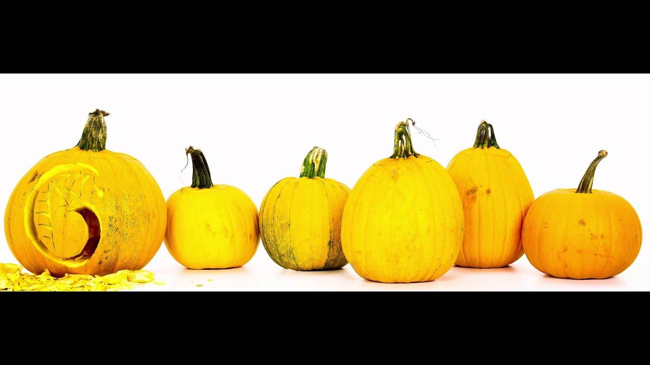 Exceptionnel Google Halloween Doodle 2011   Behind The Scenes: Pumpkins Test