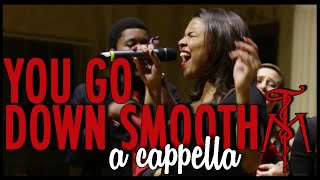 """You Go Down Smooth"" (Lake Street Dive) - Twisted Measure A Cappella"