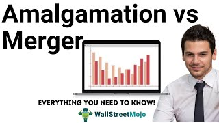 Amalgamation vs Merger | Know the Top Differences!