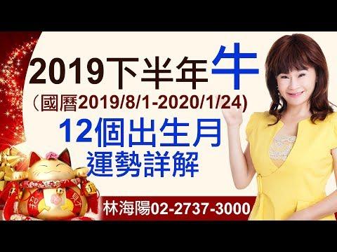林海陽 2019【生肖牛】下半年運勢(12個出生月,個別詳解) 20190529