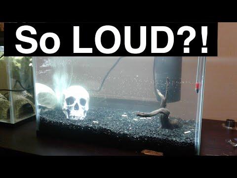 Quietest Aquarium Filter? Silence Your Filter