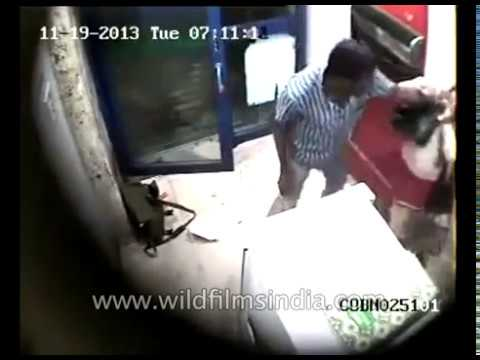Indian woman gets attacked at Bangalore ATM