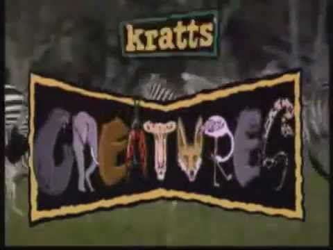 Kratts Creatures - Opening/Abertura