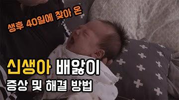 신생아 배앓이 증상과 해결방법, 육아 브이로그