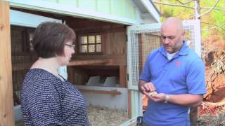 Carolina Coops & American Hemp Deep Litter Bedding Method For Backyard Chickens (hens)